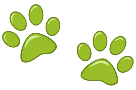 Paws illustration